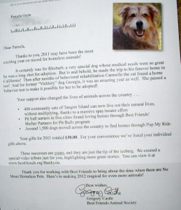 Template For A Successful Nonprofit Thank You Letter Pamela Grow - Companion dog letter template